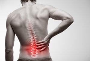low back pain pilates